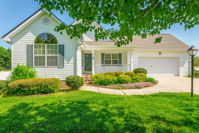 Ringgold Single Family Home For Sale: 64 Shope Ridge Rd