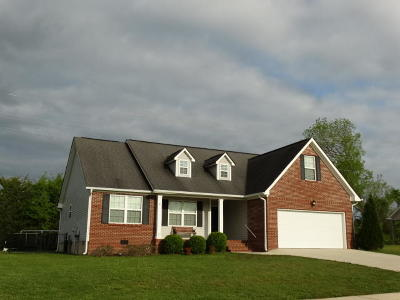 Ringgold Single Family Home Contingent: 226 Gladstone Dr