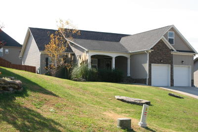 Ooltewah Single Family Home For Sale: 8910 Sunridge Dr