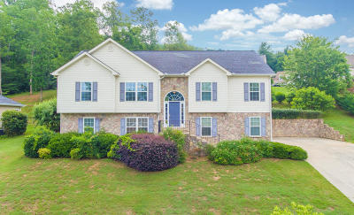 Ringgold Single Family Home For Sale: 73 Mallard Hill