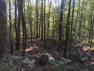 Marion Residential Lots & Land For Sale: 5 Sequatchie Mtn Road