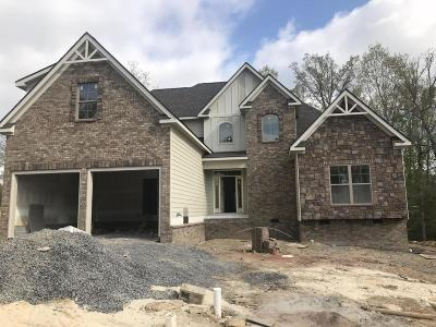 Ooltewah Single Family Home Contingent: 9409 Silver Stone Ln #18
