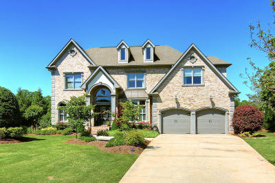 Ringgold Single Family Home For Sale: 180 Dancing Fern Tr