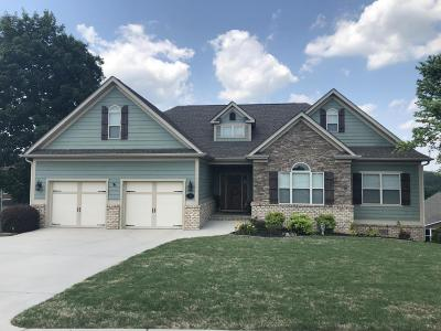Ringgold Single Family Home For Sale: 135 Holly Oak Ln