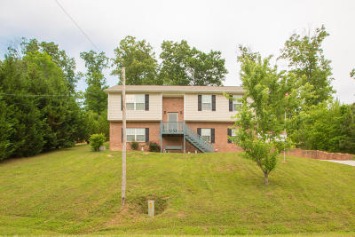 Ringgold Single Family Home For Sale: 299 Bowman Rd