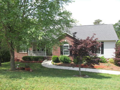 Soddy Daisy Single Family Home For Sale: 1039 Trojan Run Dr #99