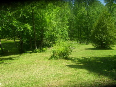 Marion Residential Lots & Land For Sale: 210 Bryant Rd
