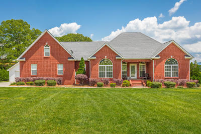 Marion Single Family Home For Sale: 250 Shady Grove Rd
