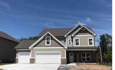 Ooltewah Single Family Home For Sale: 8205 River Birch Loop #Lot 1