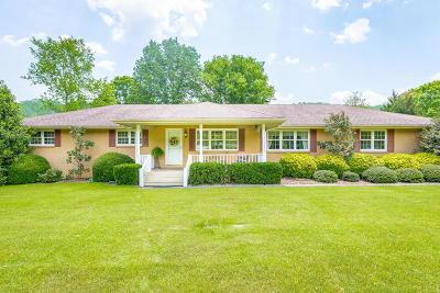 Hixson Single Family Home For Sale: 6808 Levi Rd