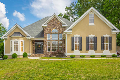 Ooltewah Single Family Home For Sale: 3128 Grassy Cove Ln
