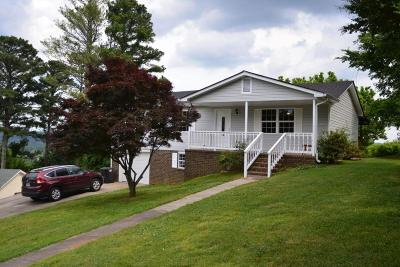 Ringgold Single Family Home For Sale: 34 Old World Dr