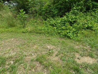 Residential Lots & Land Sold: 147 SE Green Shadow Rd #Lot 3
