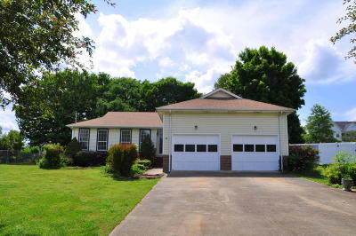 Ringgold Single Family Home For Sale: 195 Misty Ridge Ln