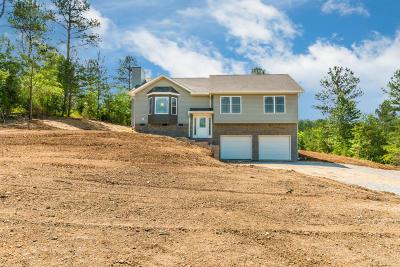Dayton Single Family Home For Sale: 114 Giles Dr