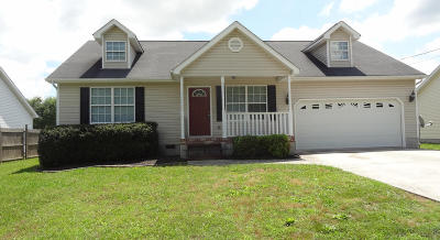 Ringgold Single Family Home For Sale: 139 Holcomb Rd
