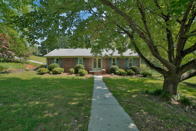 Ringgold Single Family Home For Sale: 112 Stoneybrook Ln