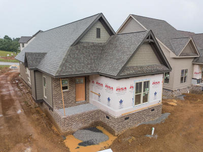 Apison Single Family Home Contingent: 10634 Ferran Way #Lot 52