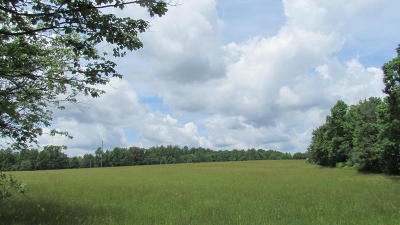 Residential Lots & Land For Sale: 0000 Moon Lake Rd