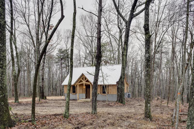 Rising Fawn Single Family Home For Sale: 504 Plum Nelly Rd
