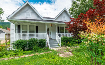 Chattanooga Single Family Home For Sale: 4601 Tennessee Ave