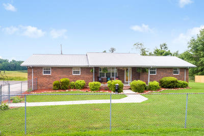 Flat Rock Single Family Home For Sale: 3202 Alabama Hwy 75