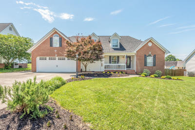 Ringgold Single Family Home Contingent: 126 Autumn Tr