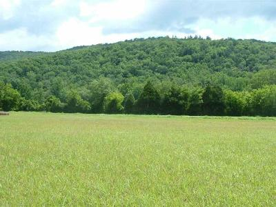 Dayton Residential Lots & Land For Sale: 38.8 Acres Cranmore Cove Rd