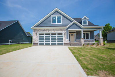 Ooltewah Single Family Home For Sale: 8423 Skybrook Dr