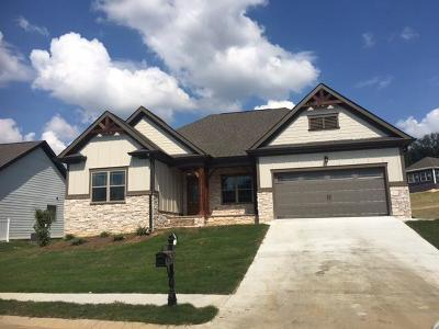 Ooltewah Single Family Home For Sale: 9023 Seven Lakes Dr #276