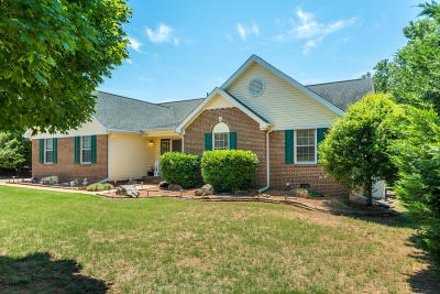 Ooltewah Single Family Home For Sale: 7802 Bebe Branch Ln