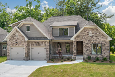 Chattanooga Single Family Home For Sale: 1013 Stone Ledge Ln #Lot 19