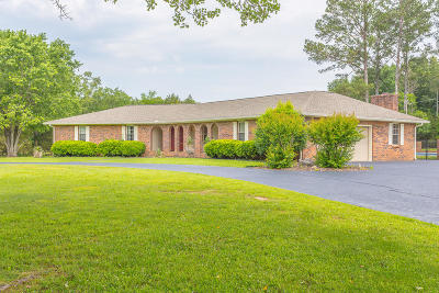 Ringgold Single Family Home For Sale: 290 Powder Horn Ln