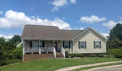 Ringgold Single Family Home For Sale: 347 Gladstone Dr