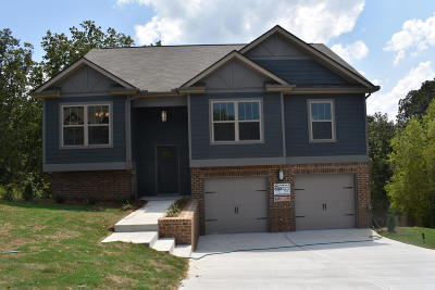 Ooltewah Single Family Home For Sale: 7316 Landlock Dr #1338
