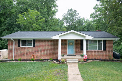 Chattanooga Single Family Home For Sale: 1031 N Sanctuary Rd