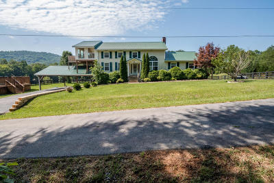Single Family Home For Sale: 110 Chapman Ct
