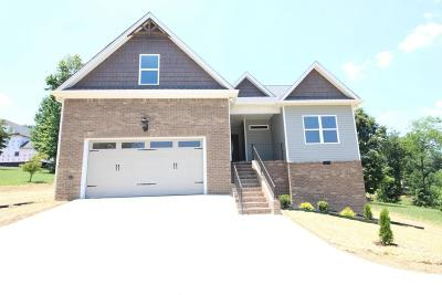 Cleveland Single Family Home For Sale: 150 SE Orrie Moss Ct
