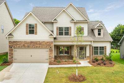 Ooltewah Single Family Home For Sale: 9714 Haven Port Ln #3