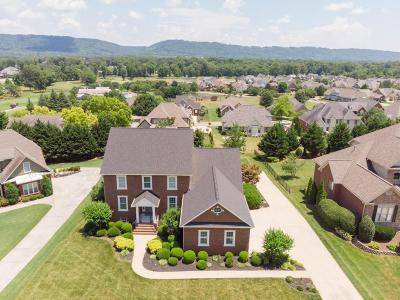 Ooltewah Single Family Home For Sale: 7474 Splendid View Dr