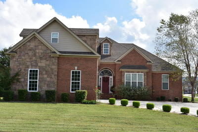 Ooltewah Single Family Home For Sale: 7720 Tranquility Dr