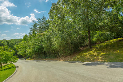 Chattanooga Residential Lots & Land For Sale: 3408 Ten Oaks Dr
