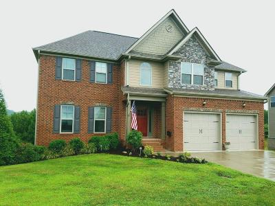 Soddy Daisy Single Family Home For Sale: 12917 Blakeslee Dr