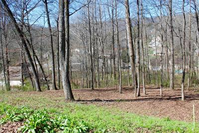 Chattanooga Residential Lots & Land For Sale: 217 Lynnolen Ln