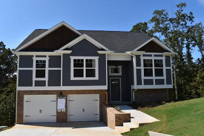 Ooltewah Single Family Home For Sale: 6255 Micasa Ln #1376