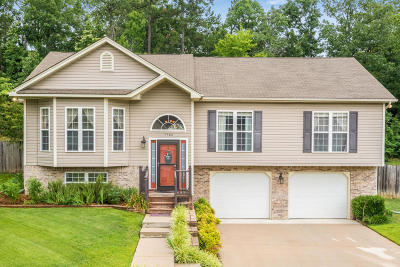 Ooltewah Single Family Home For Sale: 7580 Passport Dr