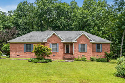 Signal Mountain Single Family Home For Sale: 193 Spring Dr