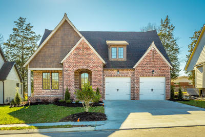 Ooltewah Single Family Home For Sale: 9282 White Ash Dr