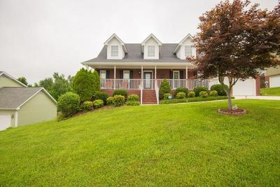 Soddy Daisy Single Family Home For Sale: 382 Classic Dr