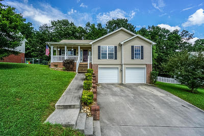 Soddy Daisy Single Family Home For Sale: 9466 Hackberry Ln